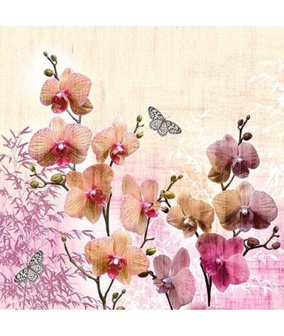Servetėlės 33cm Orchids...